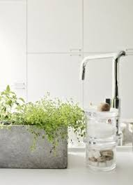 Good Plants For Bathroom by Plants For Bathrooms Lucky Bamboo Bathroom Decorating Ideas