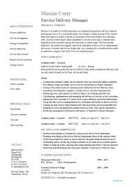 Catering Resume It Manager Format Lovely Sample Sales Doc Assistant Examples