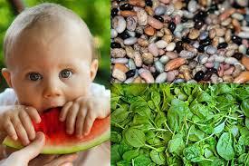 studie vegane ernährung kann nährstoffbedarf kindern decken