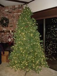 Barcana Christmas Tree For Sale by Artificial Christmas Tree Frontgate Balsam Hill