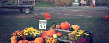 Kingsway Pumpkin Farm Hours by Things To Do In Hartville This Week