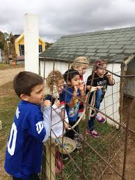 Pumpkin Farms In Fairfield Nj by Schoenly Kindergarteners Search For The Perfect Pumpkin