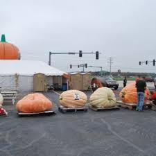 Bengtson Pumpkin Farm Lockport by Siegel U0027s Cottonwood Farm 115 Photos U0026 63 Reviews Pumpkin