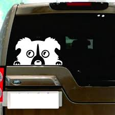 100 Truck Door Decals Buy Ruip Funny Car Body Peeking Border Collie Dog Decor