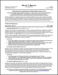 Sales Manager Resume Sample Page 1