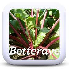 comment cuisiner les feuilles de betterave cuisiner les fanes et épluchures de vos légumes je cuisine mon potager