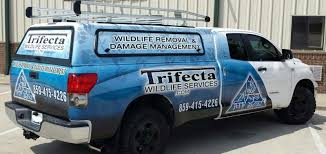 Solutions For Other Species | Trifecta Wildlife Services Lexington Vital Stats01 Customfire Fire Truck Involved In Serious Crash Youtube Used Cars Ne Trucks Buezo Motor Company Ky Fords For Sale Autocom Solutions Other Species Trifecta Wildlife Services Movin Out 2017 Lgecarmag Southern Classic Heats Up Eone Stainless Steel Rescue Fd Cooper Pating Inc Teen To Be Charged With Atmpted Murder Ramming Police Cruisers 2014 Gmc Sierra Httpwwwlexingtoncomgmcsierra1500cars Tow Truck Affordable 24 Hour Service