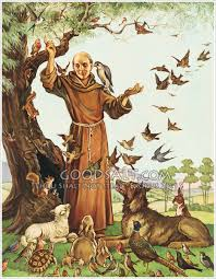 st francis of assisi patron of animals st francis garden