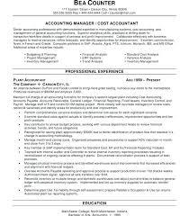Example Of Resume Australia Professional Basic
