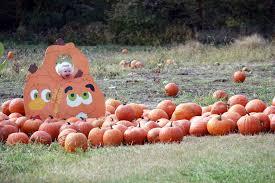 Pumpkin Patch Columbus Ga by Pumpkin Patch U0026 Corn Maze Camp Fontanelle
