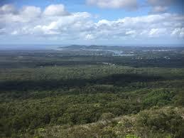 100 Mount Tinbeerwah FileTewantin National Park Seen North From