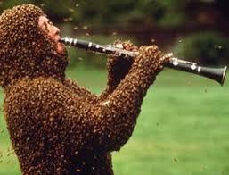 Cách bắt ong mật tự nhiên về nuôi