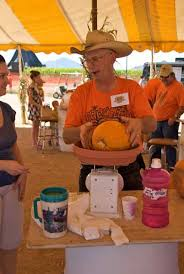 Pumpkin Patch Near Chandler Az by Halloween In Phoenix Haunted Houses Events And More