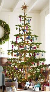 Christmas Tree Cutting Permits Colorado Springs by 25 Best Silver Tip Christmas Trees Images On Pinterest Merry