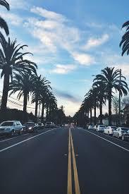 Beach California Cute Iphone Wallpaper Kawaii Palm Trees Tumblr