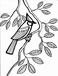 Bird Coloring Pages 11