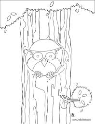 Owl Sitting On The Tree Coloring Page