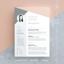 Layout For Resume Two Column Resume Template Professional Resume