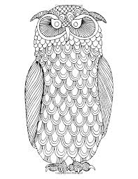 Owls Coloring Book A Stress Management For Adults Adult Books