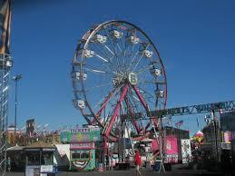 Alameda Pumpkin Patch 2015 by Ferris Wheel Alameda County Fair 2015 Pleasanton Ca Picture