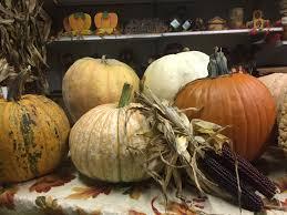 Shady Lane Farm Pumpkin Patch by Seasonal Decorations At Matthys Farm Market