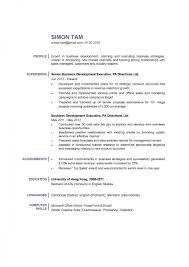 Business Development Manager It Resume Sample Free Professional Template Senior Vice President Global