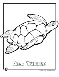 Ocean Animals Coloring Pages Animal Color Sea Page Summer