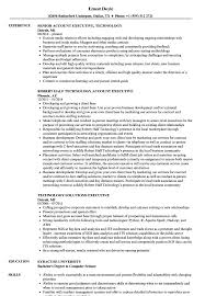 Download Technology Executive Resume Sample As Image File
