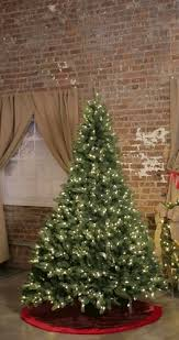 Christmas Tree 75 Ft by Home Accents Holiday 75 Ft Pre Lit Led Wesley Spruce Quick Set