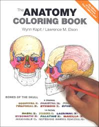 Anatomy Coloring Book Edition 5th Muscle Cell Pages