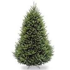 Nordic Fir Artificial Christmas Tree 6ft by 6ft Pre Lit Nordic Pine Artificial Christmas Tree Beautiful