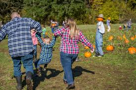 Lane Farms Pumpkin Patch by Enjoy One Last Fall Weekend At Pomeroy Living History Farm