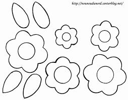 Tortue Coloriages Danimaux 100 Mandalas Zen AntiStress à