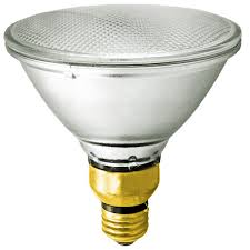 250W Halogen PAR38 Flood Light Bulb Sylvania