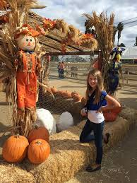 Pumpkin Patch With Petting Zoo by Gobble Wobble Days At Zoomars Petting Zoo Oc Mom Blog