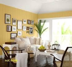 wandfarbe wohnzimmer weiße möbel flott wohnzimmer weisse