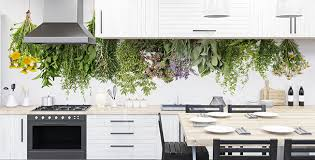 fototapeten küche größe der wand myloview de