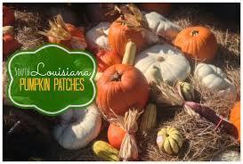 Pumpkin Patch Lafayette La by 20 Best Local Field Trip Ideas Images On Pinterest Field Trips