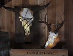 Decorated Cow Skulls Pinterest by Decorate Your Home Or Cabin By Lighting Up Your European Mount