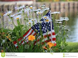 Small American Flag In Garden Daisies Stock Image Image