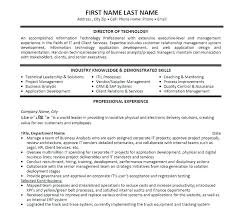 It Manager Resume Examples Program