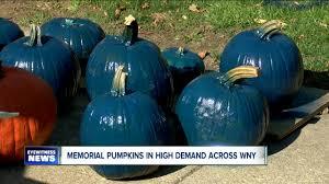 Lehner Pumpkin Farm by Memorial Pumpkins In High Demand Across Wny Wkbw Com Buffalo Ny