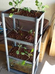 World Of Aquaponics: 12 Indoor And Backyard Diy Aquaponics System ... Hydroponic Home Garden Backyard Food Solutionsbackyard Oc Aquaponics Project Admin What Is Learn About Aquaponic Plant Growing Photos Friendly Picture With Amusing Systems Grow 10x The Today Bobsc Ezgro Amazoncom Vertical Gardening Vegetable Tower Indoor Outdoor From Fish To Ftilizer Greenhouse Im In My City Back Yard Yes I Am Satuskaco