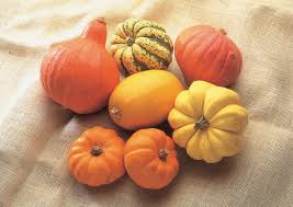 What Kinds Of Pumpkins Are Edible pumpkins vegetables