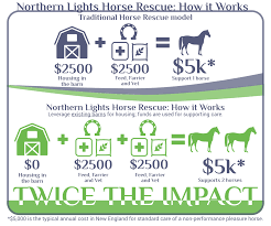 Home - Northern Lights Horse Rescue Barn Rabbit Rescue Driving The Rusty 200 Abdoned 56 Chevy Cheap Truck Challenge Central Whidbey Island Fire Responds To At The Smith Injured Barn Owl Rescued Wildlife Friends Foundation Thailand Old Barns Long May They Live Shelter And Stand In Green Open Unboxing Paw Patrol Roll Rockys And Play Fun The Rescue Barn Adopted Dogs Rvr Horse Takes Worst Cases To Heal Renew Tbocom Paw Patrol Rocky8217s Track Set Walmartcom European Owl A Bird Rehabilitated Trained For Assortment Of 6 Small Dogs From Rescue Group Sit On Lavendar