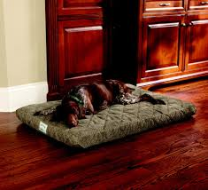 Tempur Pedic Dog Beds by Super Comfortable Tempurpedic Dog Bed Invisibleinkradio Home Decor
