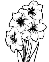 Free Coloring Pages Of Flower Name