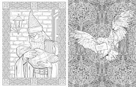 Example Of The Art Found Inside Harry Potter Coloring Book