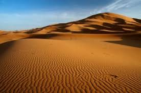 Greening Of Sahara Desert Triggered Early Human Migrations Out