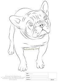 Astonishing Printable Bulldog Coloring Pages With